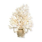 White Coral/ Natural sand Seaward Wall Sconce with Customizable Shades