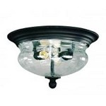 Two Light Black Clear Seedy Glass Outdoor Flush Mount - Z-Lite 509F-BK