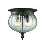Two Light Black Clear Seedy Glass Outdoor Flush Mount - Z-Lite 516F-BK