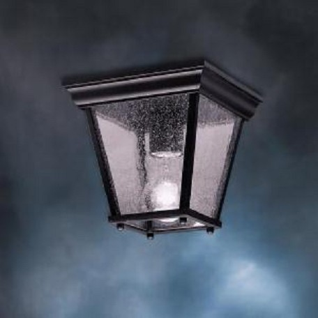 Black 1 Light Outdoor Ceiling Fixture