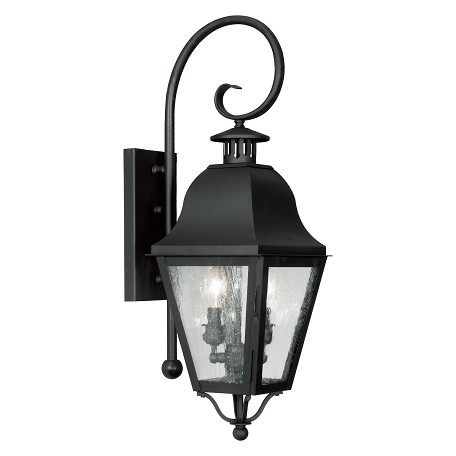 Black Amwell Large Outdoor Wall Sconce with 2 Lights