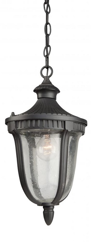 Artcraft One Light Seeded Clear Glass Graphite Hanging Lantern - AC8025GR