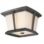 Kichler Two Light Anvil Iron Outdoor Flush Mount - 49220AVI