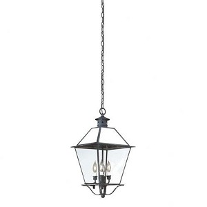 Troy Four Light Black Hanging Lantern - FCD8959CI