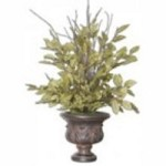 Uttermost Sugary Salal Evergreen Plant - 61005