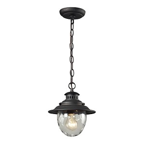 "Searsport Collection 1-Light 10"" Weathered Charcoal Outdoor Hanging Pendant with Water Glass 45041/1"