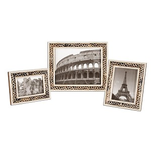 Carnelia Collection Modern Photo Frames, (Set of 3) 18531