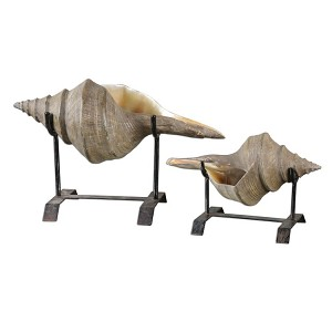 Conch Shell Collection Sculpture, (Set of 2) 19556