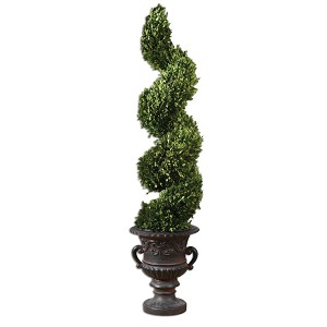 Preserved Boxwood Collection Spiral Topiary 60094