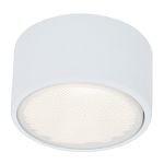 "Ares Collection 5"" 1-Light White Flush or Wall Mount 20742-WH"