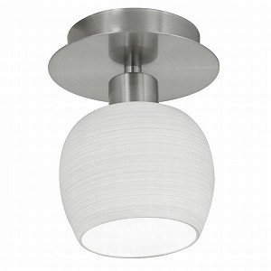 "Bantry Collection 1 Light 6"" Matte Nickel Wall/Ceiling Light 90115A"