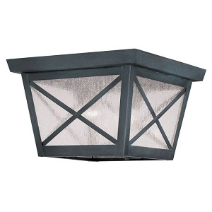 "Montgomery Collection 2-Light 9"" Charcoal Outdoor Ceiling Mount with Seeded Glass 2679-61"