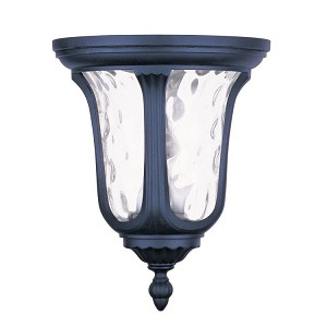 "Oxford Collection 2-Light 11"" Black Outdoor Ceiling Mount with Clear Water Glass 7861-04"