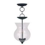 "Legacy Collection 2-Light 8"" Black Convertible Chain Hang/Ceiling Mount with Hand Blown Clear Seeded Glass 4392-04"