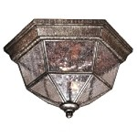 "Taylor Court Collection 2-Light 11"" Vintage Rust Outdoor Ceiling Fixture with Clear Seeded Glass 8619-A61"