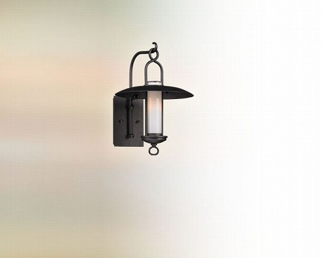"Carmel Collection 1-Light 10"" Graphite Outdoor Wall Fixture B3331"