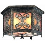 "Gables Collection Energy Efficient 2-Light 18"" Charred Gold Outdoor Ceiling Light CF9909CG"
