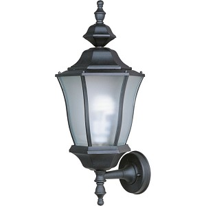 "Madrona Collection 1-Light 20"" Black Energy Efficient Outdoor Wall Light 85044BK"