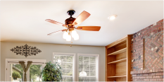 Open Box Ceiling Fans