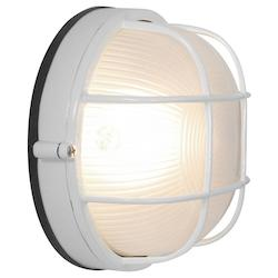 Access Frosted Single Light Outdoor Wall Sconce From Nauticus Collection