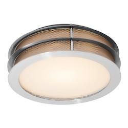 Access Brushed Steel / Frosted Iron 1 Light Flush Mount Ceiling Fixture