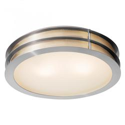 Access Brushed Steel / Frosted Iron 2 Light Flush Mount Ceiling Fixture