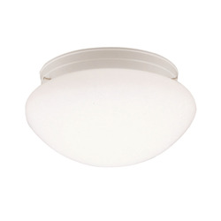 Kichler White Ceiling Space 2 Light Flush Mount Indoor Ceiling Fixture