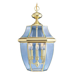 Livex Lighting Polished Brass Outdoor Foyer Hall Fixture