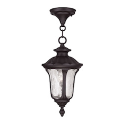 Livex Lighting One Light Bronze Hanging Lantern