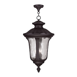 Livex Lighting Three Light Bronze Hanging Lantern