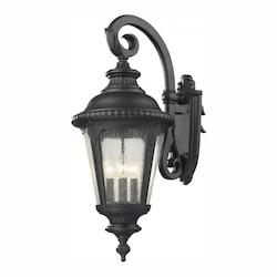 Z-Lite Four Light Black Clear Seedy Glass Wall Lantern