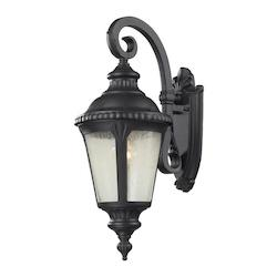 Z-Lite One Light Black Clear Seedy Glass Wall Lantern