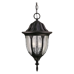 Savoy House Two Light Clear Seeded Glass Textured Black Hanging Lantern