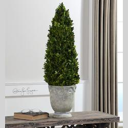 Uttermost Light Stone Ceramic Boxwood Cone Ceramic Topiary With Natural Foliage