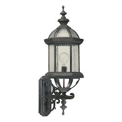 Quorum One Light Rustic Silver Wall Lantern
