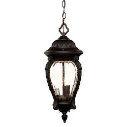 Acclaim Lighting Three Light Matte Black Hanging Lantern