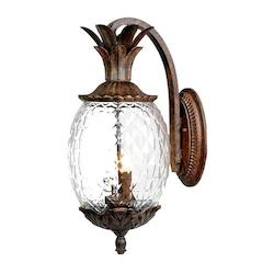 Acclaim Lighting Two Light Black Coral Wall Lantern
