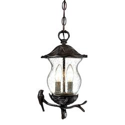 Acclaim Lighting Avian Collection Hanging Lantern 2-Light Outdoor Black Coral Light Fixture