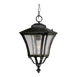 Acclaim Lighting Tuscan Collection Hanging Lantern 1-Light Outdoor Black Coral Light Fixture