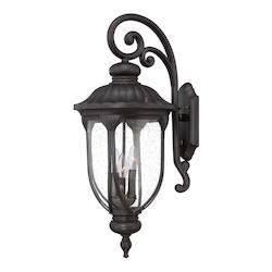 Acclaim Lighting Outdoor Wall Mount Light With Black Finish
