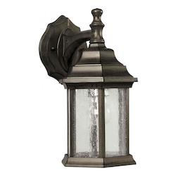 Forte One Light Olde Bronze Clear Seeded  Panels Glass Wall Lantern