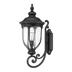 Acclaim Lighting Wall Lantern - Medium