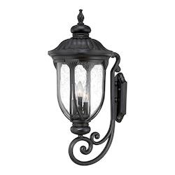 Acclaim Lighting Wall Lantern - Large