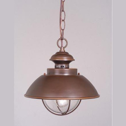 Vaxcel International Harwich 10In. Outdoor Pendant