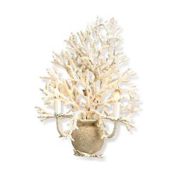 Currey White Coral/ Natural sand Seaward Wall Sconce with Customizable Shades