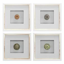 Uttermost Sea Urchins Shadow Box Art, S/4