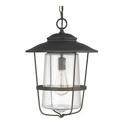 Capital 1 Light Outdoor Hanging Lantern