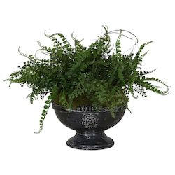 Uttermost Uttermost Amberly Fern Centerpiece