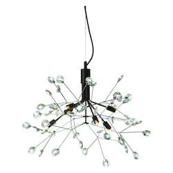 Dainolite 6Lt Chandelier, Black & Polished Chrome Finish