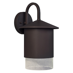 Forte 1 Light Outdoor Dark Sky Wall Lantern